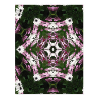 Purple and White Daisies Kaleidoscope 7 Postcard