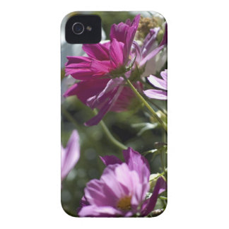 Purple and White Daisy BlackBerry Bold Case