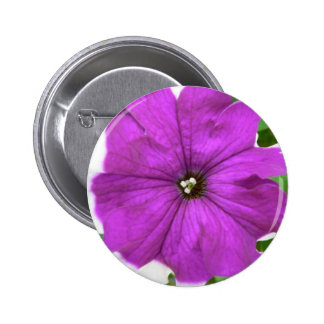 Purple And White Flower In The Grass Pin