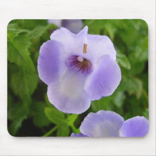 Purple and White Flowers Mousepad
