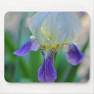 Purple and White Iris Mouse Pad