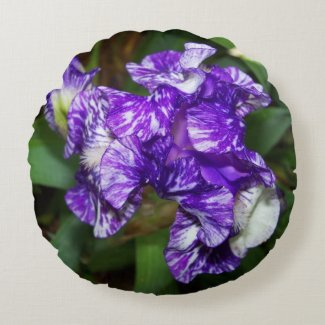 Purple and White Irises Flower Round Pillow
