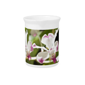 Purple and White Orchid Drink Pitcher