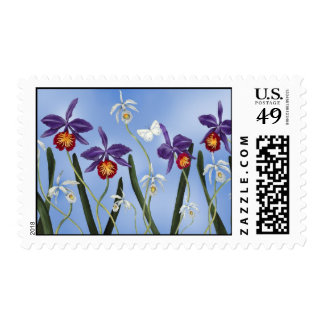 Purple and White Orchid Stamps