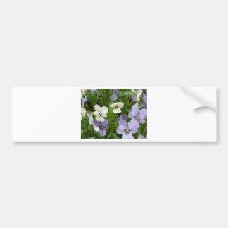 purple and white pansy bumper sticker