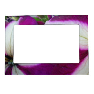 Purple and White Striped Petunias Magnetic Photo Frame