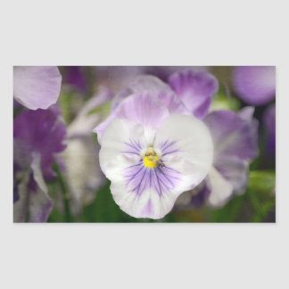 Purple and White Violas by Shirley Taylor Rectangular Sticker