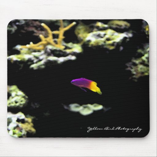 Purple and Yellow Fish Mousepad