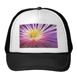 Purple and Yellow Flower Watercolour Hat