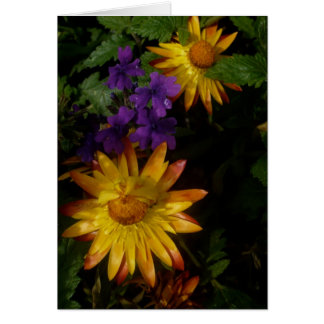 Purple and Yellow flowers | Postage Card