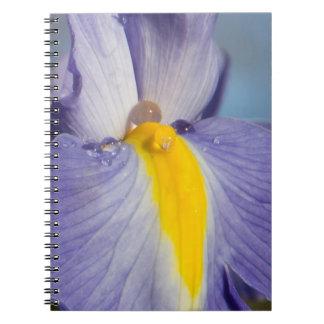 Purple and Yellow Iris with Raindrops Notebook