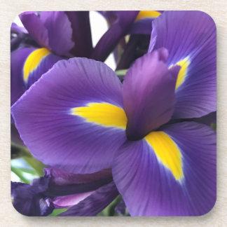 Purple and Yellow Irises Drink Coaster