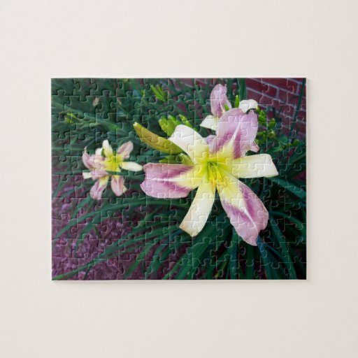 Purple and Yellow Lily Puzzle