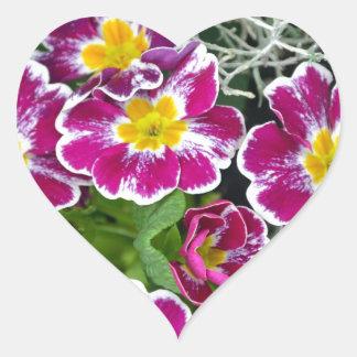 Purple and yellow primrose flowers heart stickers