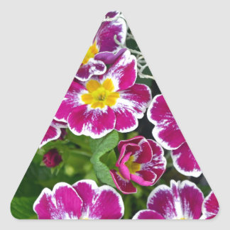 Purple and yellow primrose flowers triangle stickers