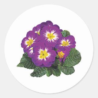 Purple and Yellow Primroses Round Stickers