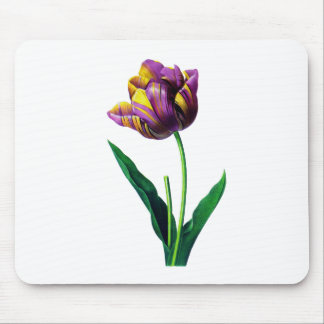 Purple and Yellow Tulip by Redoute Mouse Pad