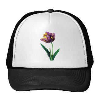 Purple and Yellow Tulips by Pierre Joseph Redoute Trucker Hat