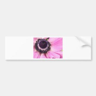 Purple Anemone Car Bumper Sticker