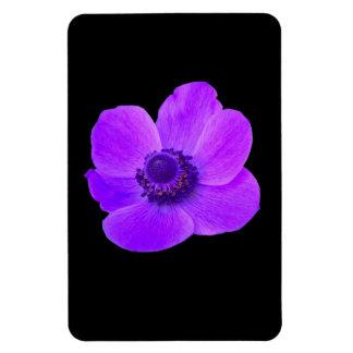 Purple Anemone Premium Magnet
