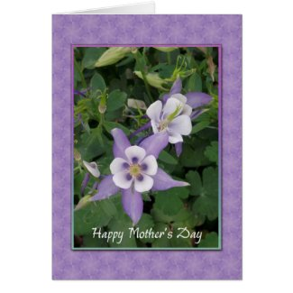Purple Aquilegia, Columbine Mother's Day Card