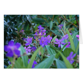 Purple Arrangement Greeting Card
