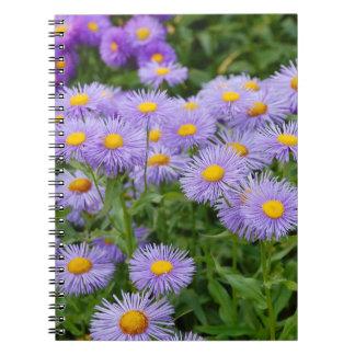 Purple aster flower garden notebook