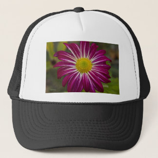 Purple Aster Flower Power Trucker Hat