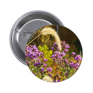 Purple Asters Button