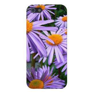 Purple Asters Case For iPhone SE/5/5s