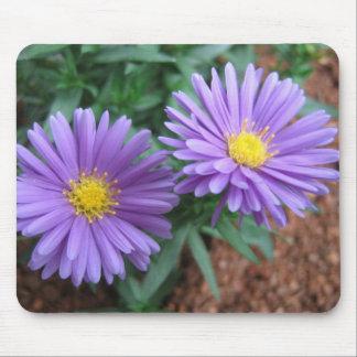 Purple asters mousepad