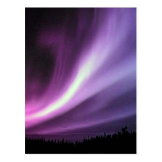 Purple Aurora Postcard