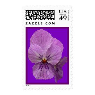 Purple Background  Purple Flowers Postage Stamp