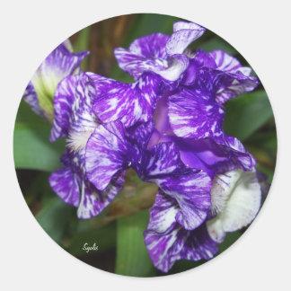 Purple Batik Iris Sticker
