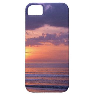 Purple Beach Sunset iPhone 5 Covers