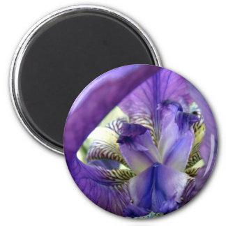 Purple Bearded Iris Flower Floral Macro 2 Inch Round Magnet