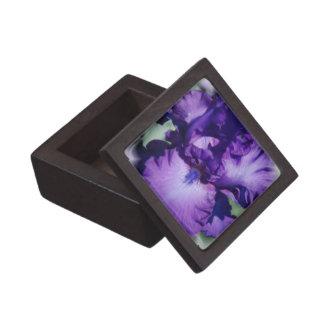 Purple Bearded Iris Premium Gift Box