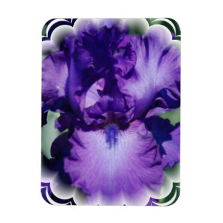 Purple Bearded Iris Premium Magnet Rectangular Magnet