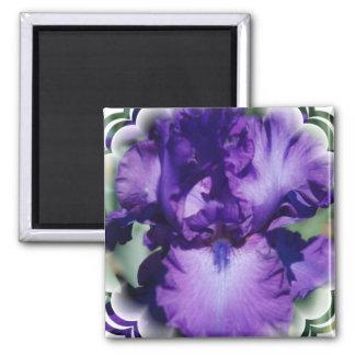 Purple Bearded Iris Square Magnet Fridge Magnets