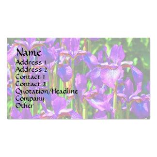 Purple Bearded Irises Floral Business Card