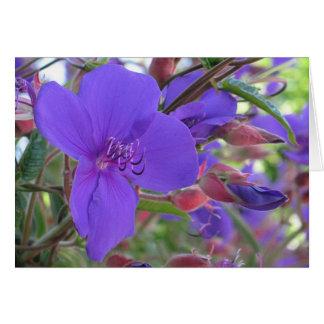 Purple Beauties Card