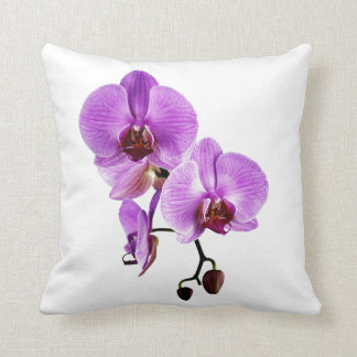 Purple beautiful orchid flower blooming pillows