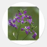 Purple Beauty Stickers