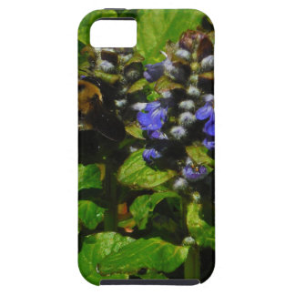 Purple Bee Balm and Bumble Bee iPhone 5 Cases