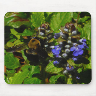 Purple Bee Balm and Bumble Bee Mouse Pad