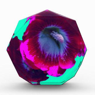 Purple-Black garden Hollyhocks by SHARLES Award