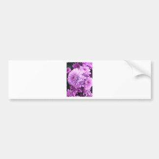 Purple Bloom Car Bumper Sticker