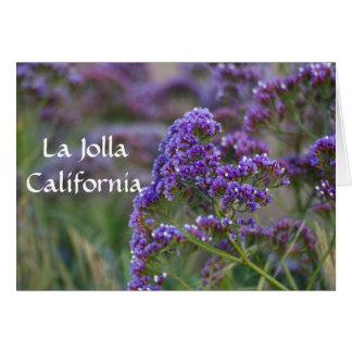 Purple blooms in La Jolla Card