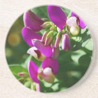 Purple Blooms Sandstone Coaster