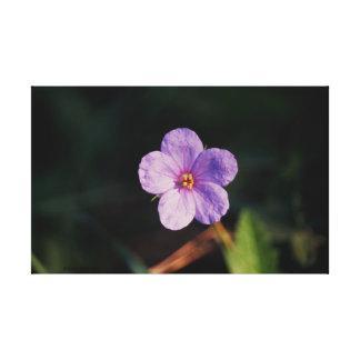 Purple Blossom Gallery Wrap Canvas